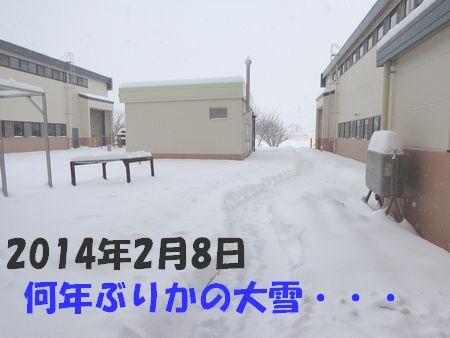 2014.02.08.jpg